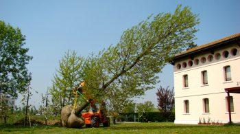 cover-casa-privata-trasporto-piante